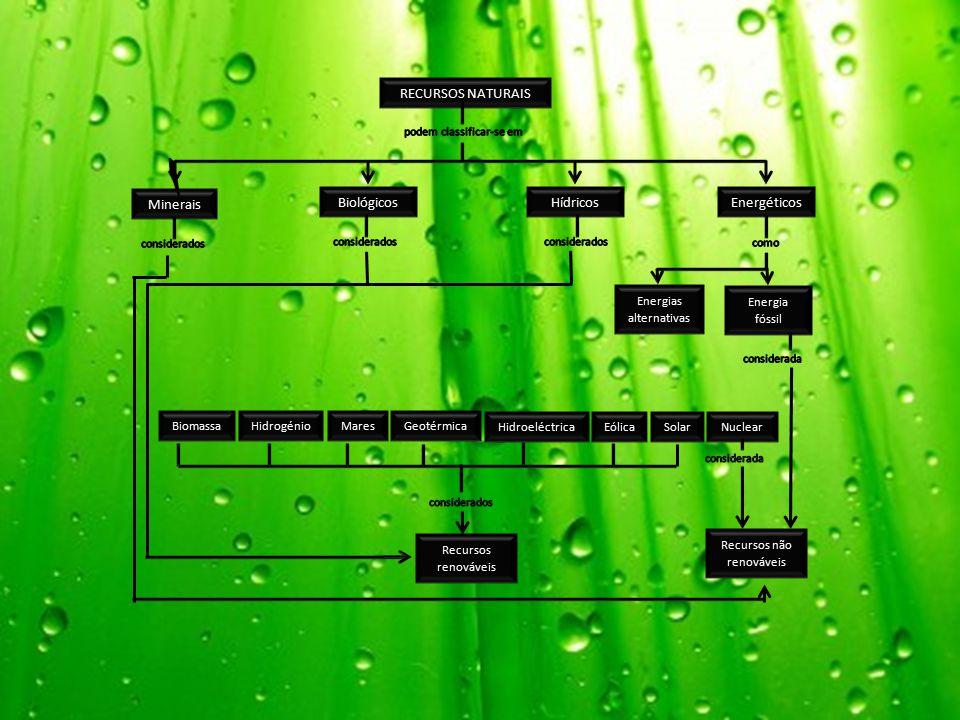 RECURSOS NATURAIS Minerais Biológicos Hídricos Energéticos
