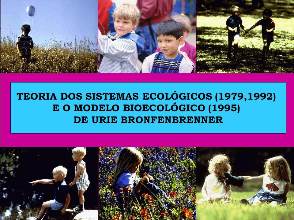 TEORIA DOS SISTEMAS ECOLÓGICOS (1979,1992)