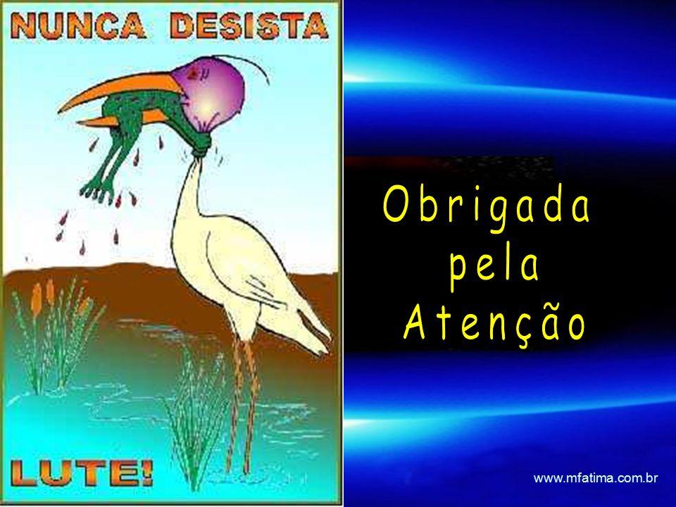 Obrigada pela Atenção www.mfatima.com.br