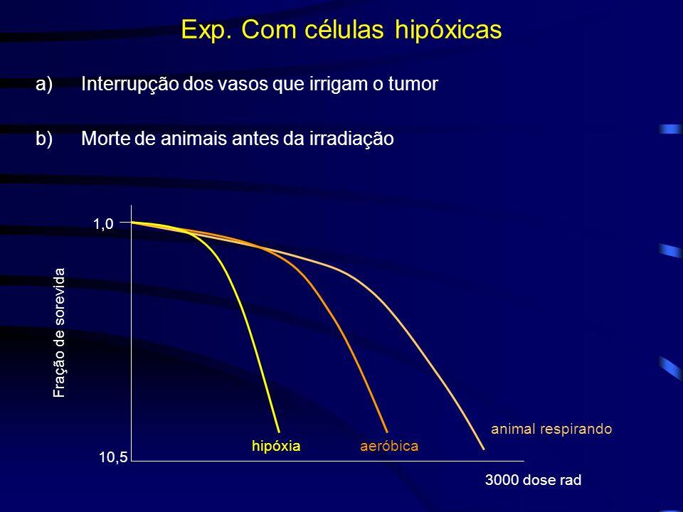 Exp. Com células hipóxicas