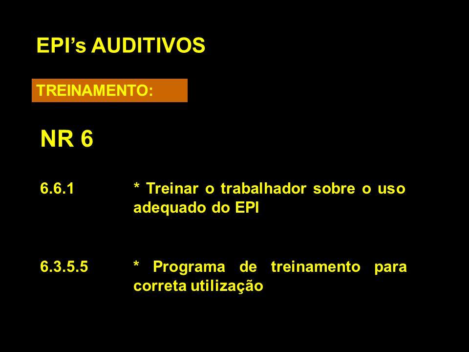 NR 6 EPI's AUDITIVOS TREINAMENTO:
