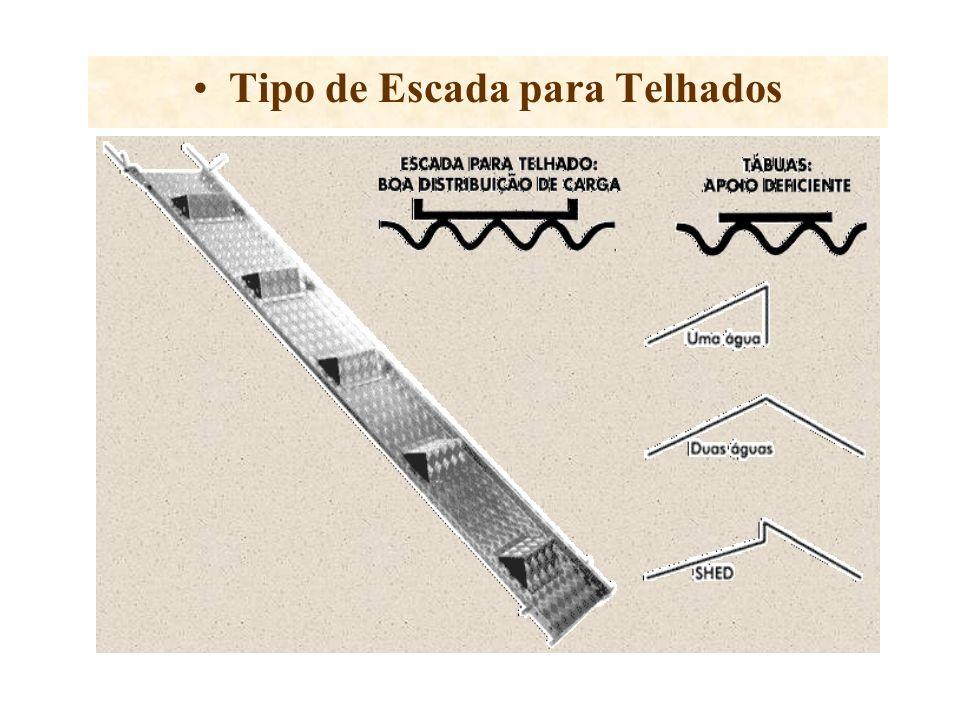 Tipo de Escada para Telhados