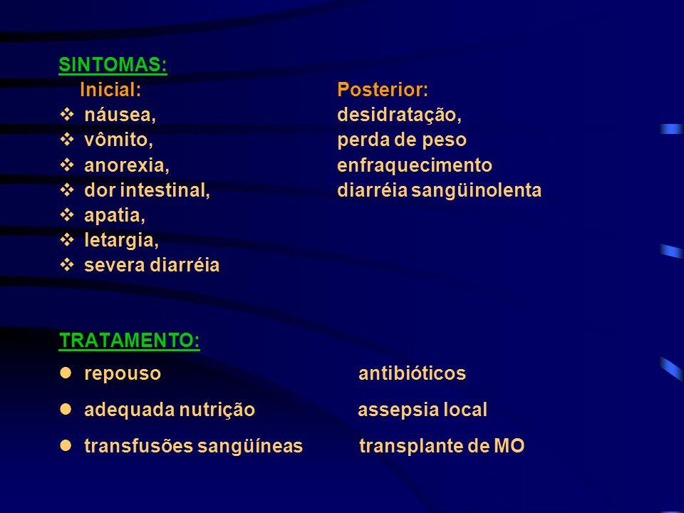 SINTOMAS:Inicial: Posterior: náusea, desidratação, vômito, perda de peso. anorexia, enfraquecimento.
