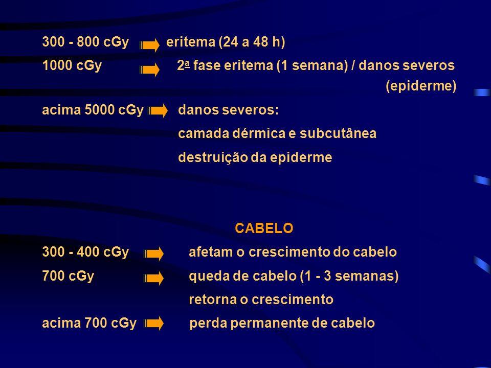 300 - 800 cGy eritema (24 a 48 h)1000 cGy 2a fase eritema (1 semana) / danos severos (epiderme)