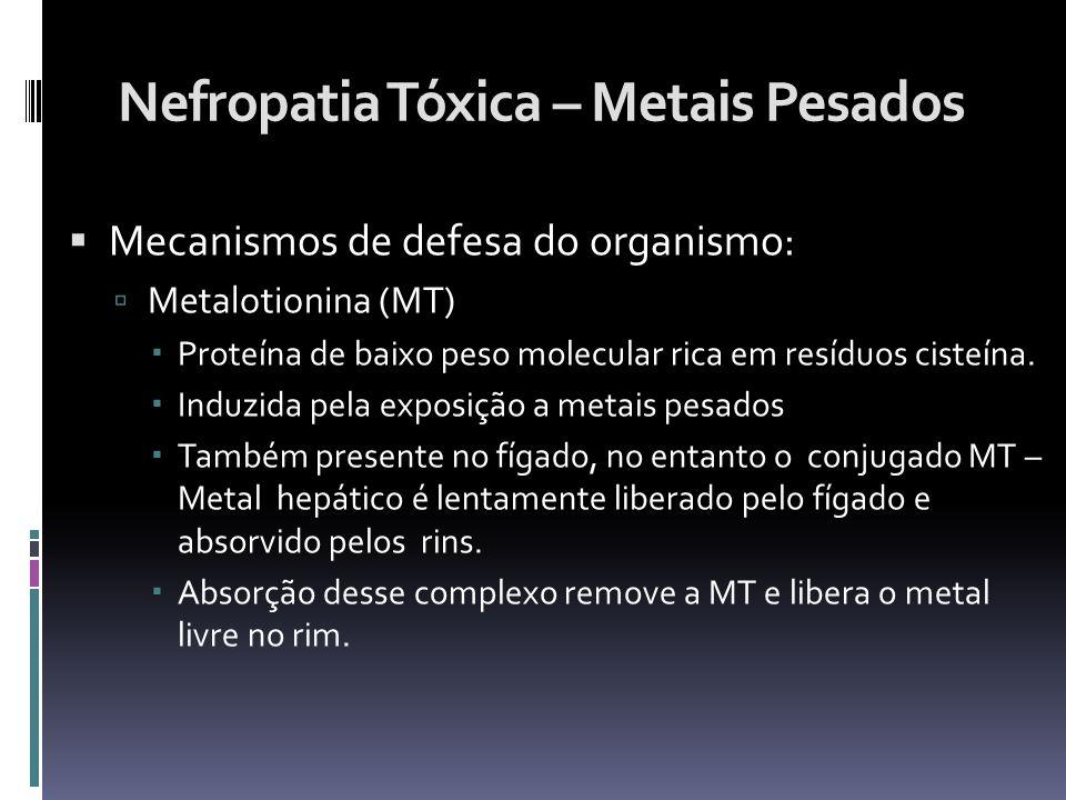 Nefropatia Tóxica – Metais Pesados