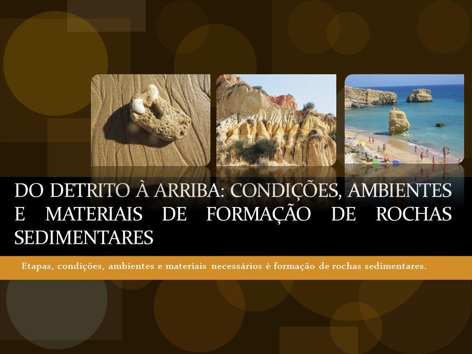 DO DETRITO À ARRIBA: Condições, Ambientes e Materiais de Formação DE Rochas sedimentares