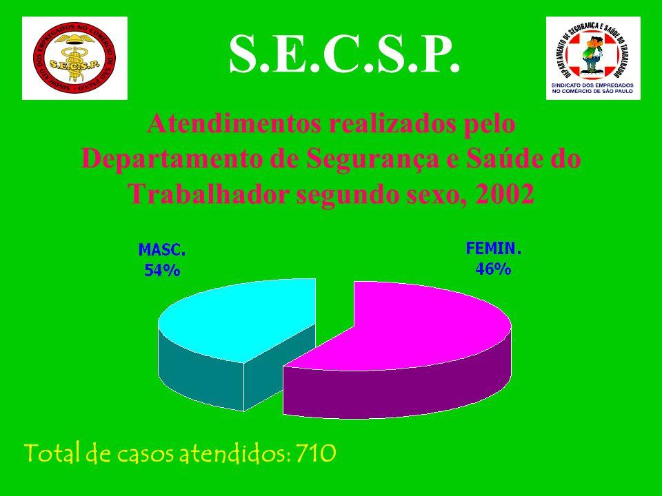 S.E.C.S.P.Atendimentos realizados pelo Departamento de Segurança e Saúde do Trabalhador segundo sexo, 2002.