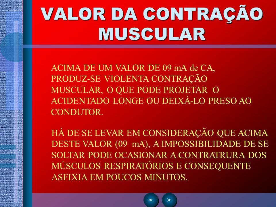 VALOR DA CONTRAÇÃO MUSCULAR