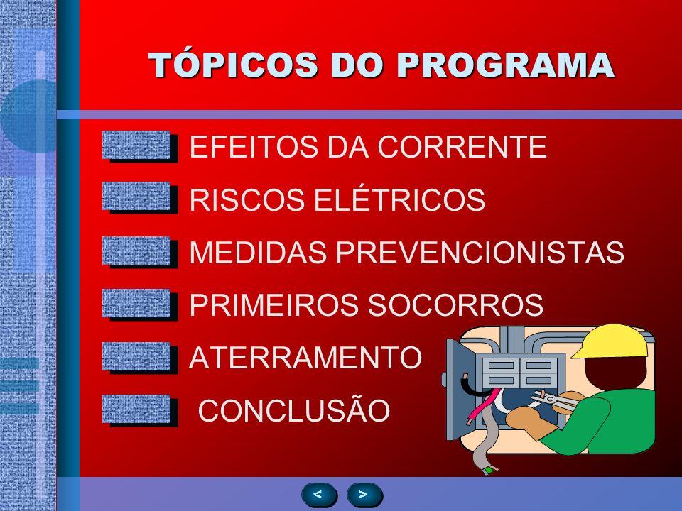 TÓPICOS DO PROGRAMA EFEITOS DA CORRENTE RISCOS ELÉTRICOS