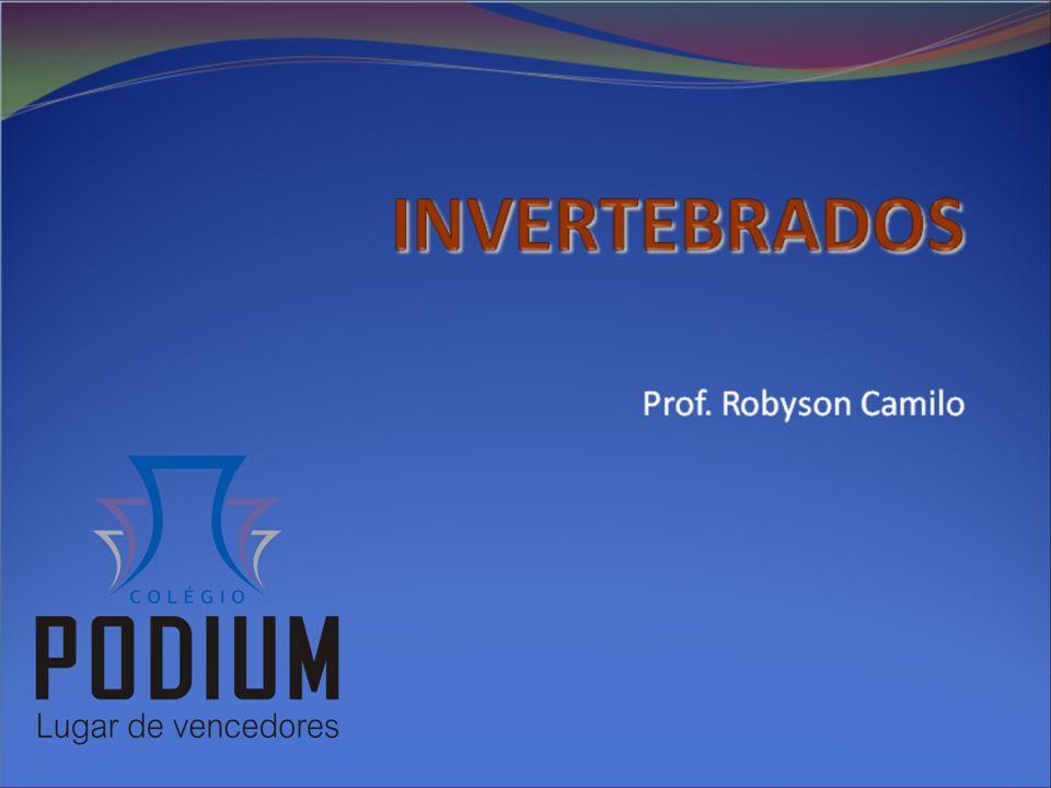 INVERTEBRADOS Prof. Robyson Camilo