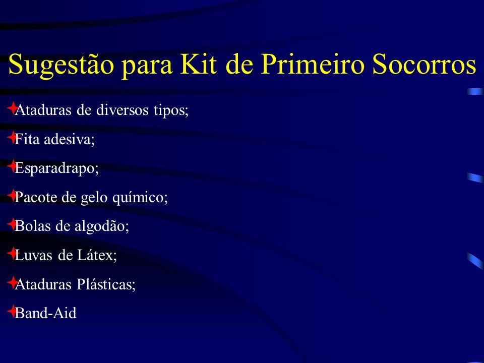 Sugestão para Kit de Primeiro Socorros