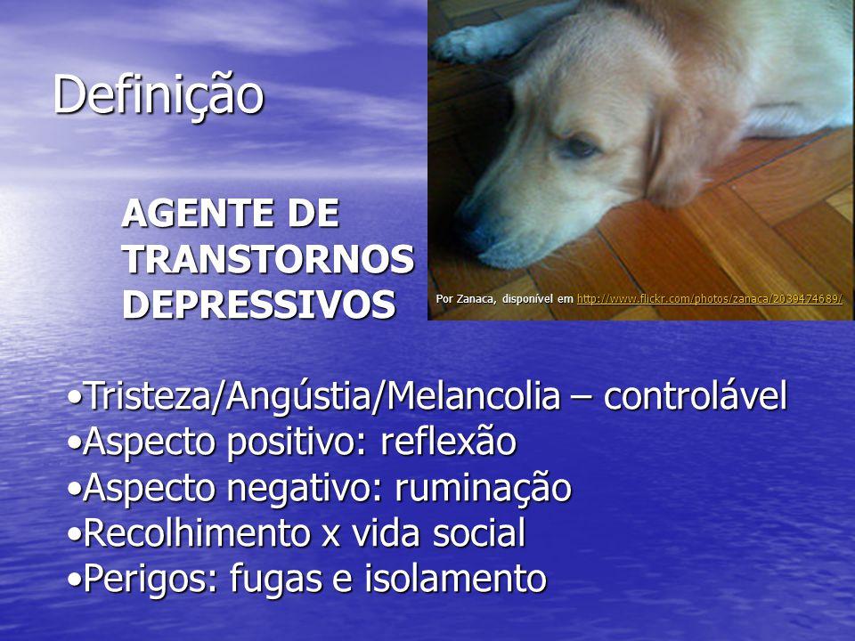 Definição AGENTE DE TRANSTORNOS DEPRESSIVOS