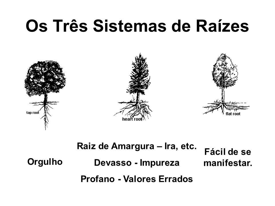 Os Três Sistemas de Raízes