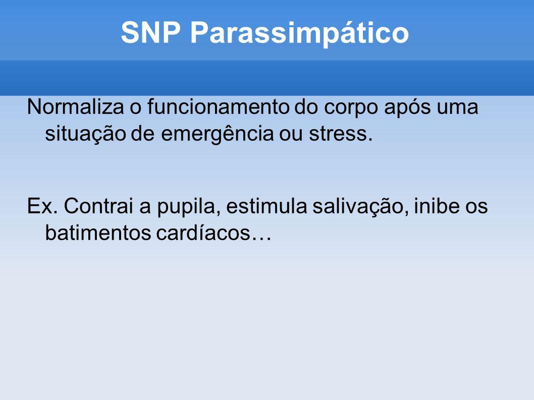 SNP Parassimpático Normaliza o funcionamento do corpo após uma situação de emergência ou stress.