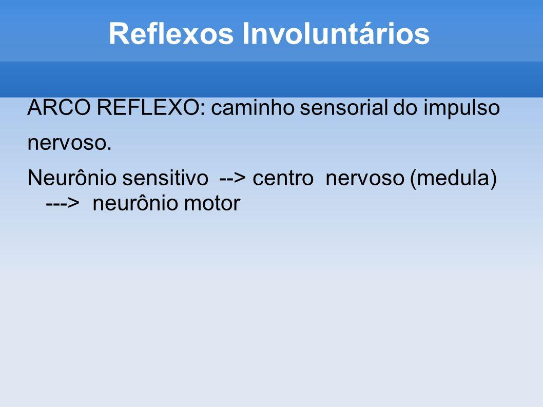 Reflexos Involuntários