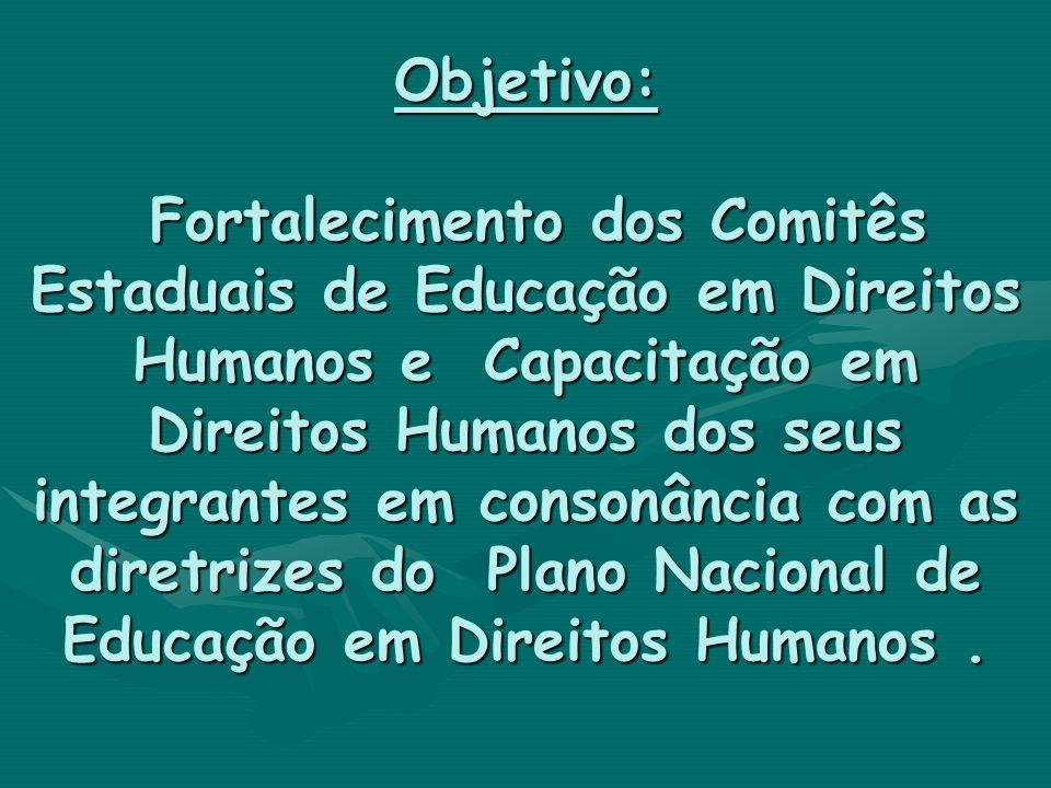 Objetivo: Fortalecimento dos Comitês Estaduais de Educação em Direitos Humanos e Capacitação em Direitos Humanos dos seus integrantes em consonância com as diretrizes do Plano Nacional de Educação em Direitos Humanos .
