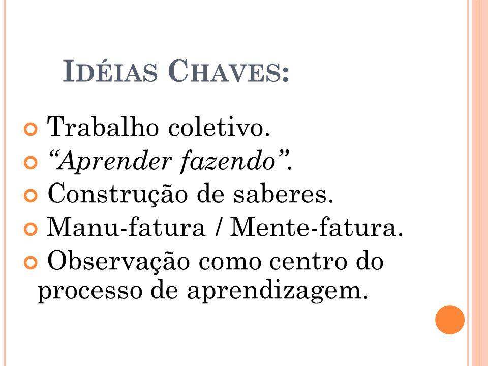 Idéias Chaves: Trabalho coletivo. Aprender fazendo .