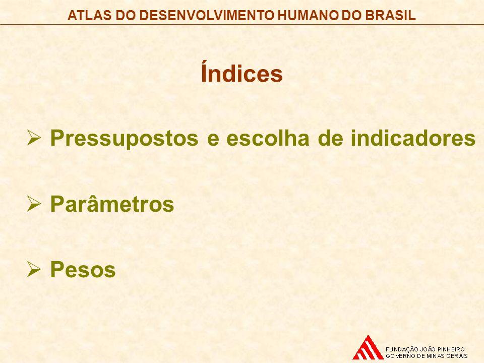Índices Pressupostos e escolha de indicadores Parâmetros Pesos