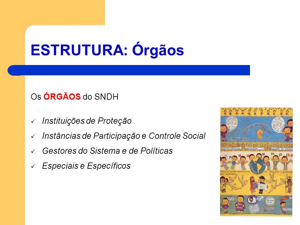 ESTRUTURA: Órgãos Os ÓRGÃOS do SNDH Instituições de Proteção