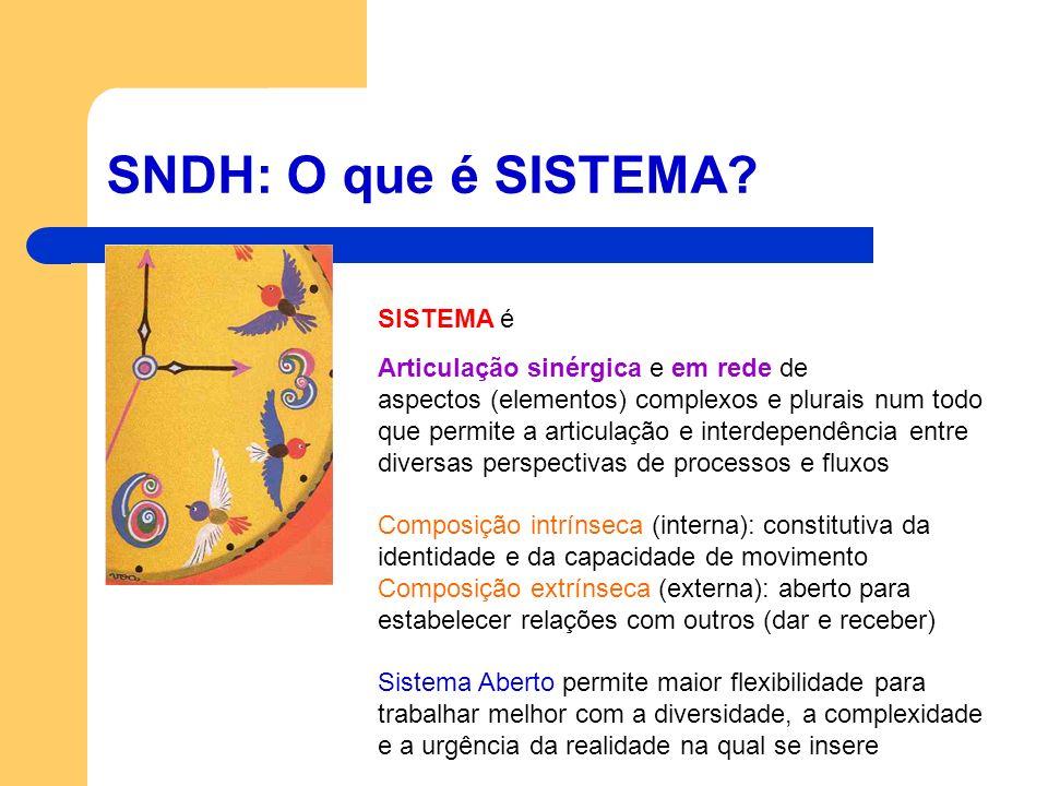 SNDH: O que é SISTEMA SISTEMA é Articulação sinérgica e em rede de