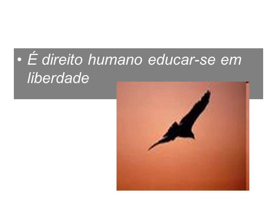 É direito humano educar-se em liberdade