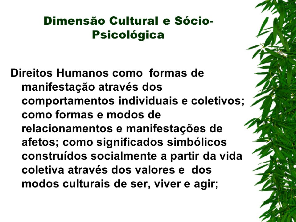 Dimensão Cultural e Sócio-Psicológica