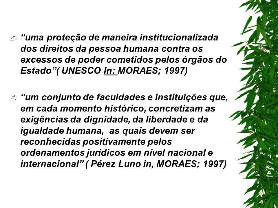 uma proteção de maneira institucionalizada dos direitos da pessoa humana contra os excessos de poder cometidos pelos órgãos do Estado ( UNESCO In: MORAES; 1997)