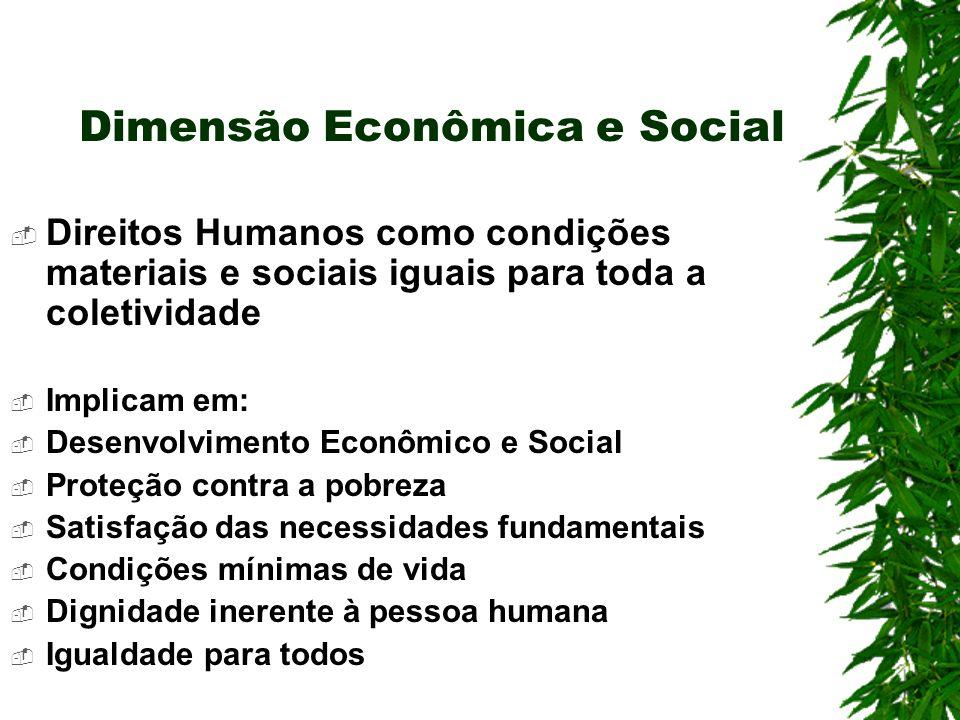 Dimensão Econômica e Social