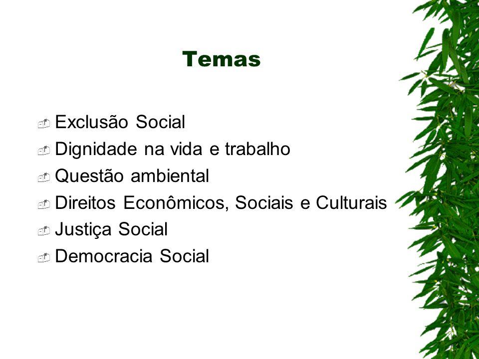 Temas Exclusão Social Dignidade na vida e trabalho Questão ambiental