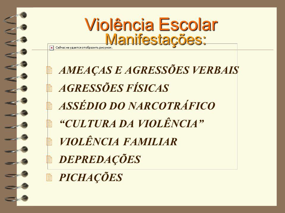 Violência Escolar Manifestações: AMEAÇAS E AGRESSÕES VERBAIS