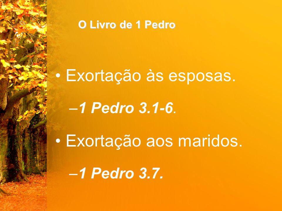 Exortação às esposas. Exortação aos maridos. 1 Pedro 3.1-6.