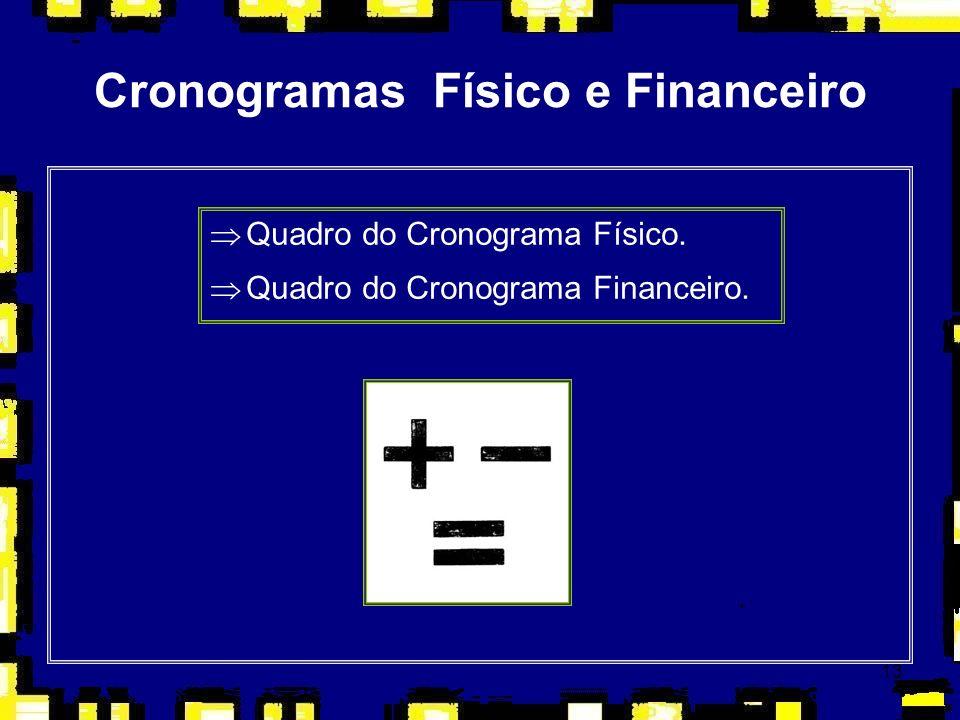 Cronogramas Físico e Financeiro