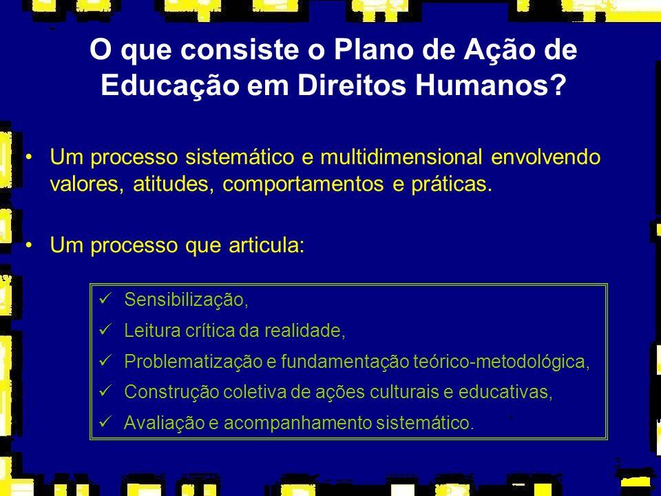 O que consiste o Plano de Ação de Educação em Direitos Humanos