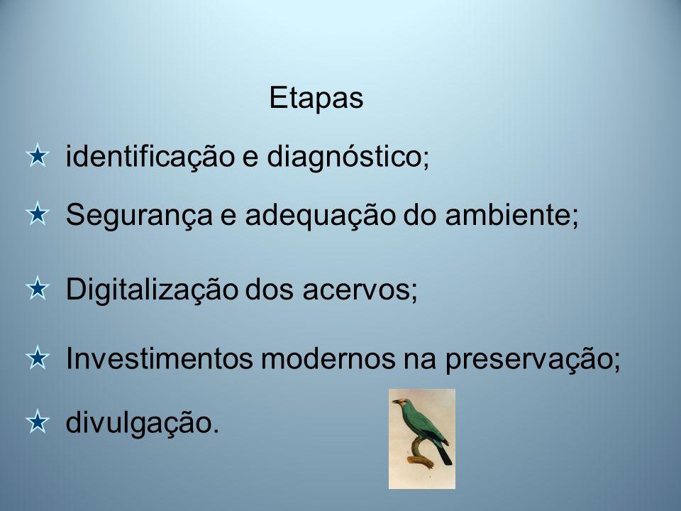 Etapasidentificação e diagnóstico; Segurança e adequação do ambiente; Digitalização dos acervos; Investimentos modernos na preservação;