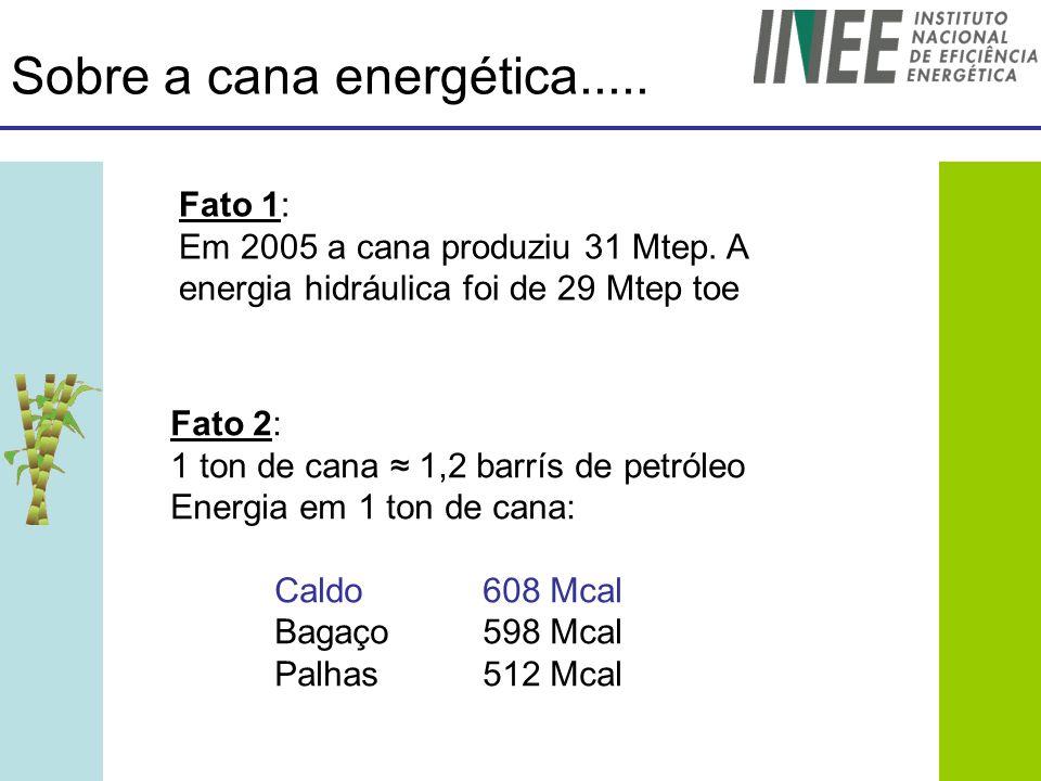 Sobre a cana energética.....