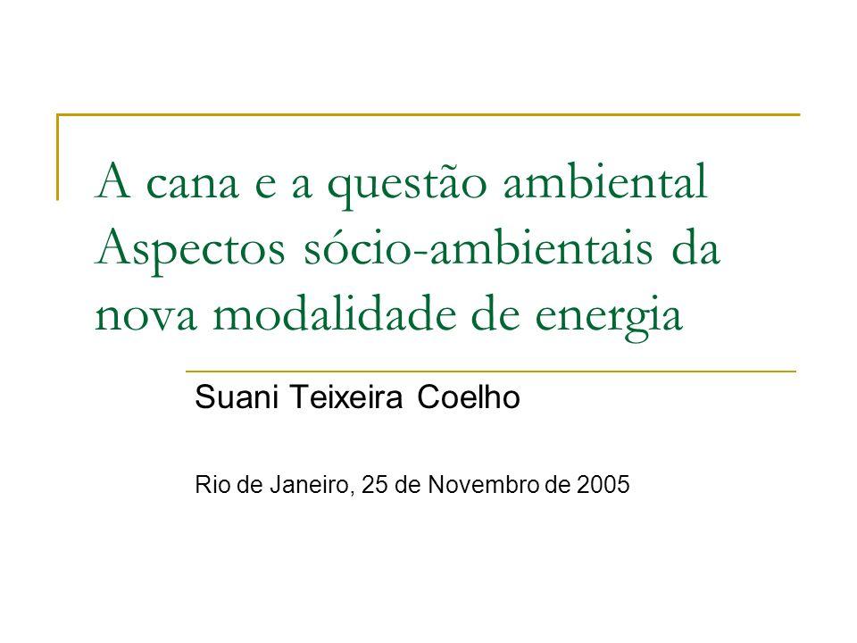 Suani Teixeira Coelho Rio de Janeiro, 25 de Novembro de 2005