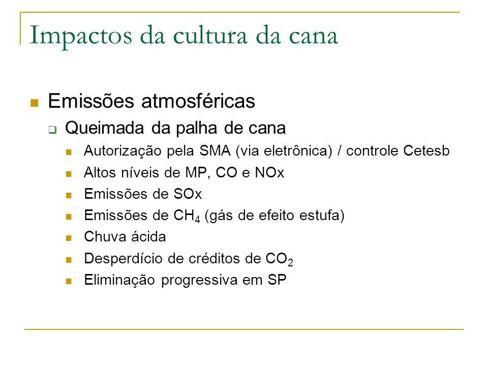 Impactos da cultura da cana