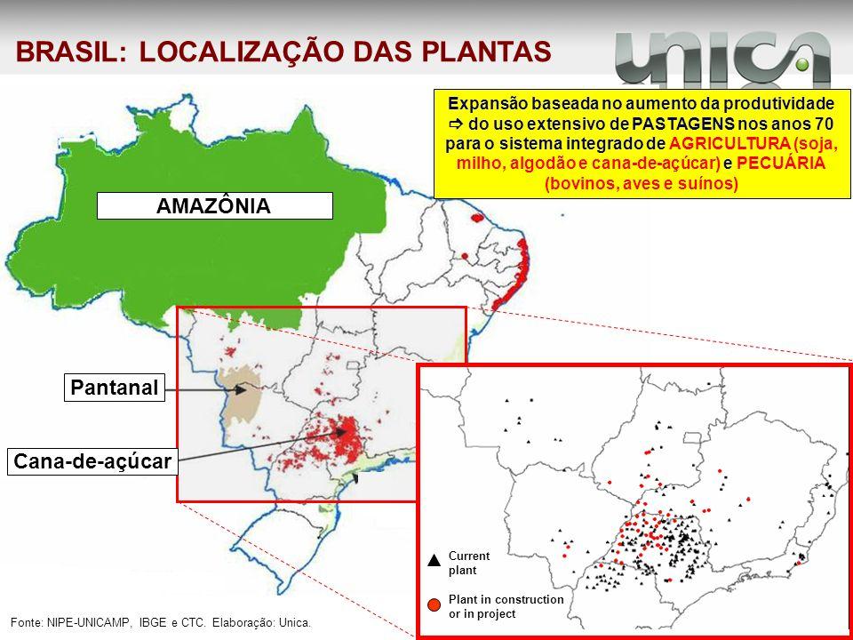 BRASIL: LOCALIZAÇÃO DAS PLANTAS