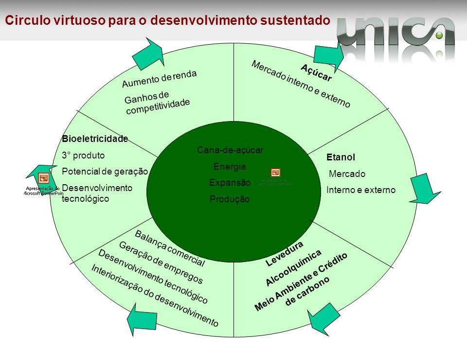 Meio Ambiente e Crédito de carbono