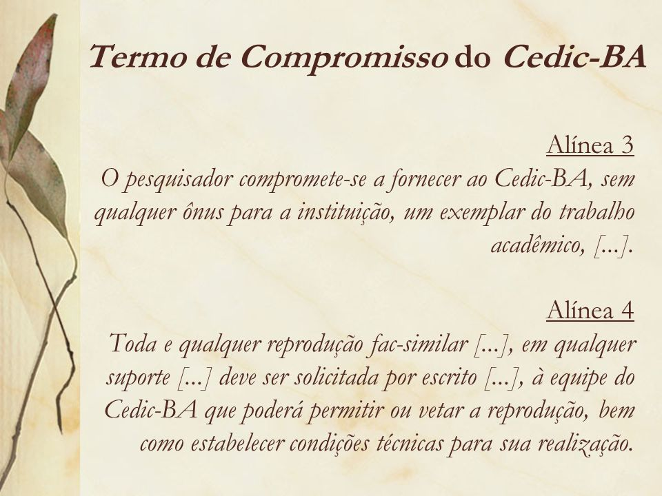Termo de Compromisso do Cedic-BA