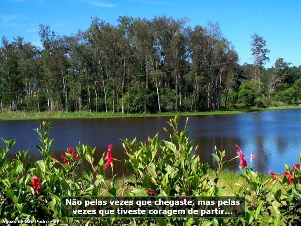 P0009345 - ÁGUAS DE SÃO PEDRO - RESTAURANTE DO LAGO-700.jpg