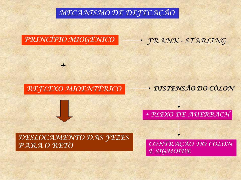 + MECANISMO DE DEFECAÇÃO PRINCÍPIO MIOGÊNICO FRANK - STARLING