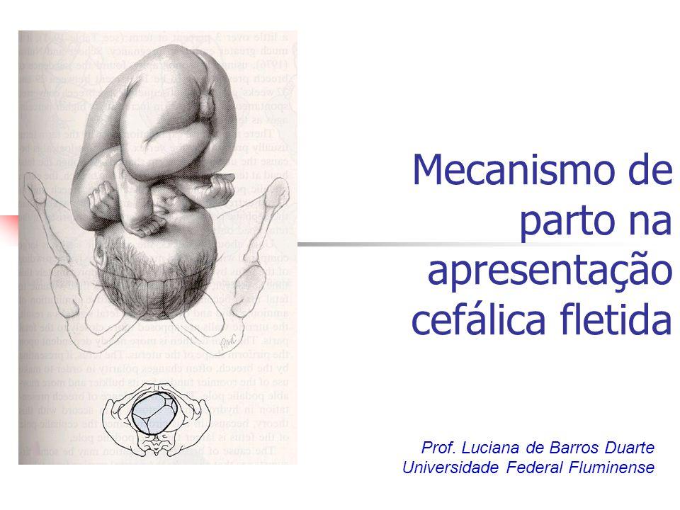 Mecanismo de parto na apresentação cefálica fletida