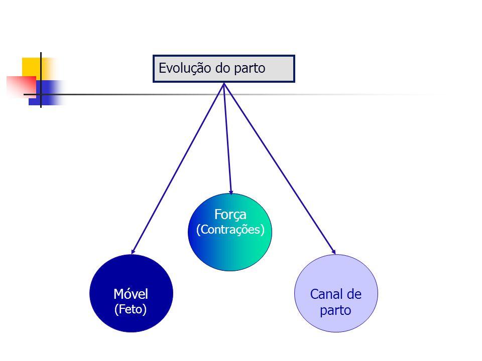 Evolução do parto Força (Contrações) Móvel (Feto) Canal de parto