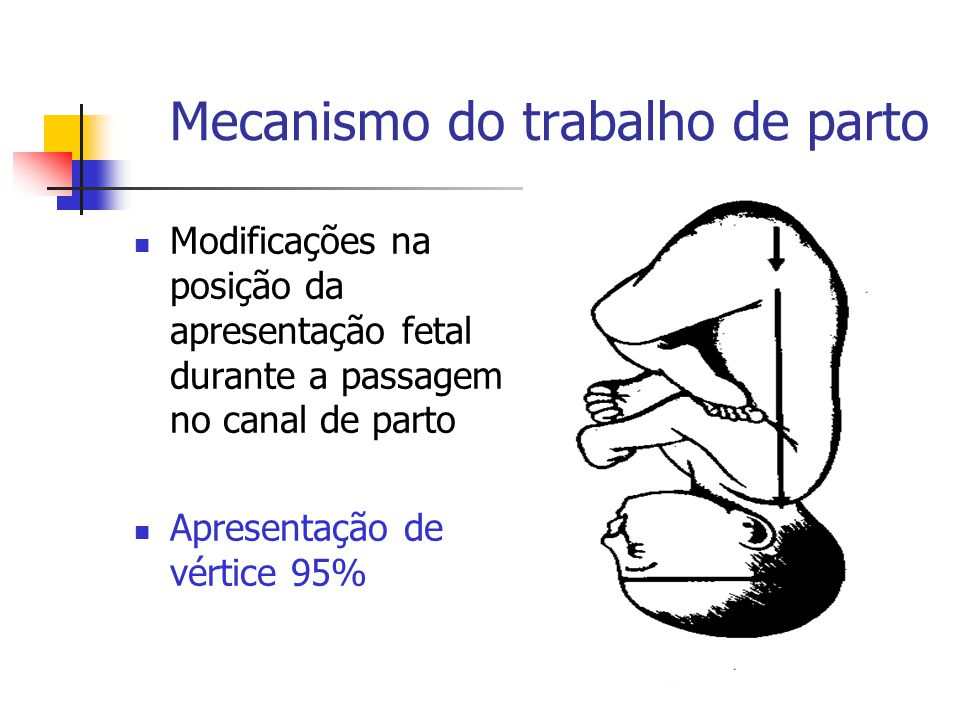 Mecanismo do trabalho de parto
