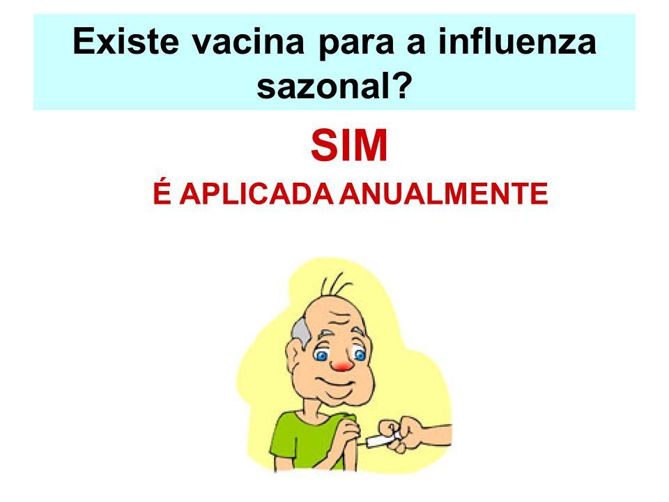 Existe vacina para a influenza sazonal
