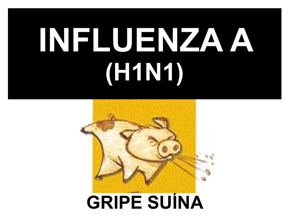 INFLUENZA A (H1N1) GRIPE SUÍNA