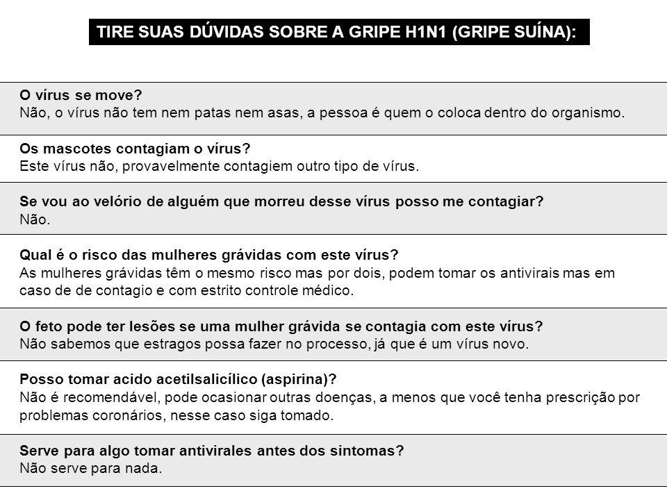 TIRE SUAS DÚVIDAS SOBRE A GRIPE H1N1 (GRIPE SUÍNA):