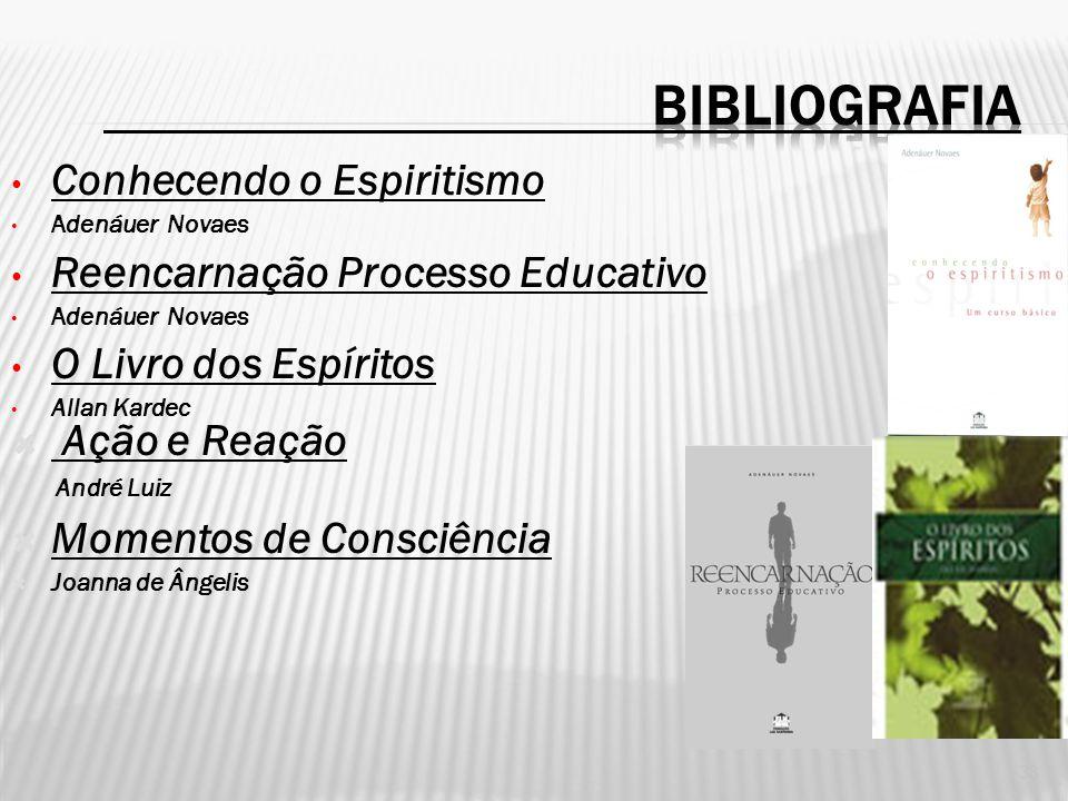 BIBLIOGRAFIA Conhecendo o Espiritismo Reencarnação Processo Educativo
