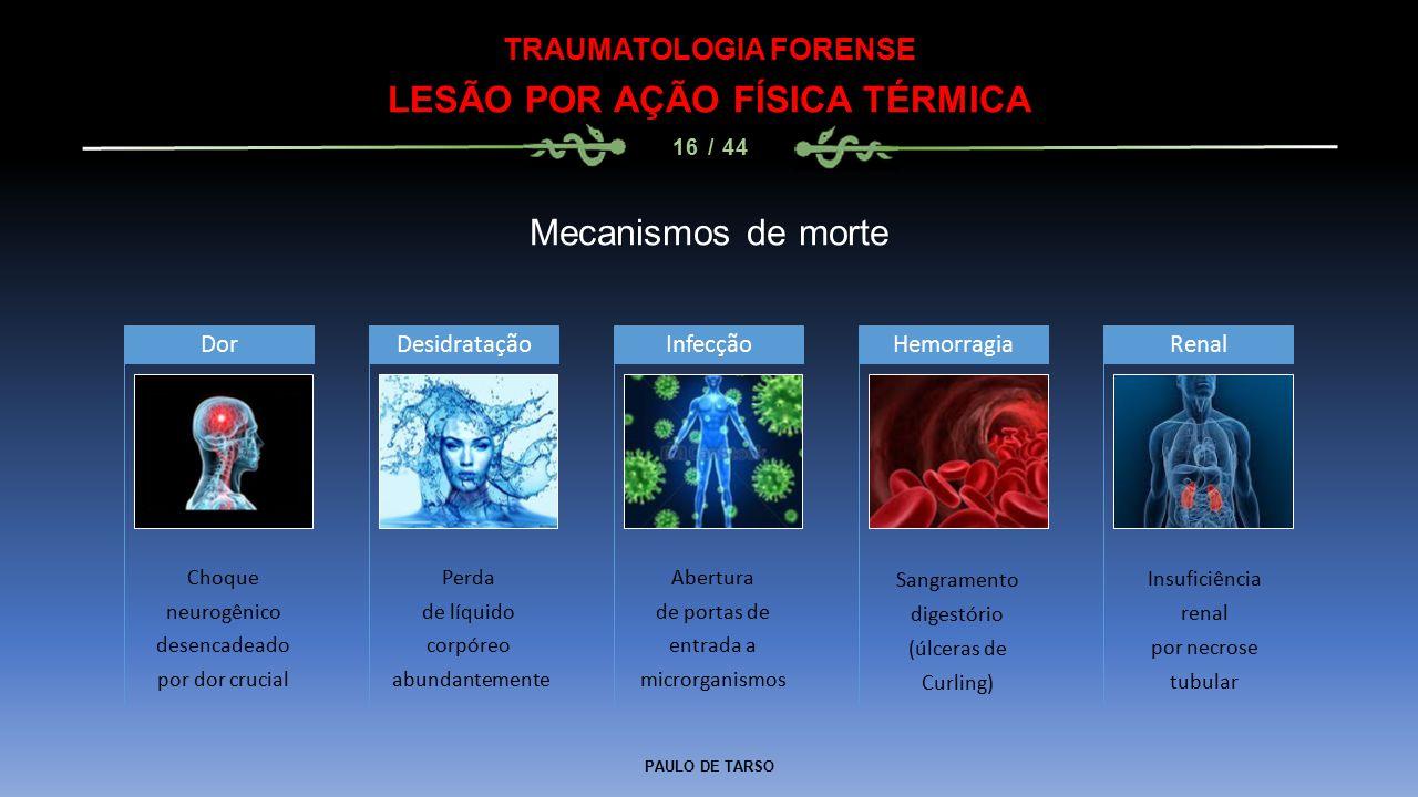 TRAUMATOLOGIA FORENSE LESÃO POR AÇÃO FÍSICA TÉRMICA